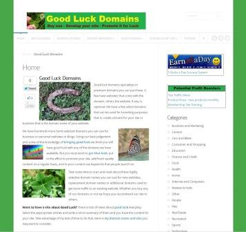 goodluckdomains.com image